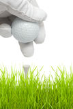 Putting golf ball on a tee. Isolated against white background Royalty Free Stock Images