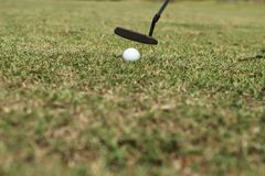 Putting golf ball royalty free stock images