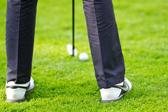 Putting golfer Royalty Free Stock Photography
