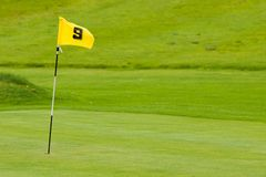 Putting green. A putting green with yellow flag. Shallow depth of field Stock Image