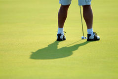 Putting green. Golfer on the putting green Stock Image