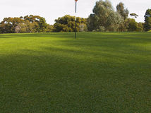 Putting green. On a golf course Royalty Free Stock Photography