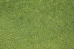 Putting green. Detailed background of golf course putting green grass royalty free stock photography