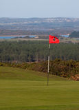 Putting green and flag Royalty Free Stock Images