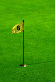 Putting green with flag Stock Photos