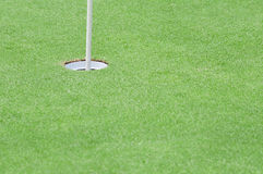 Putting green Royalty Free Stock Images