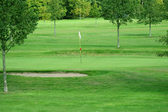 Putting green. On a golf course Royalty Free Stock Image