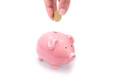 Putting money in piggy bank. Closeup of a hand putting a coin in a pink piggy bank. Isolated on white Royalty Free Stock Photography