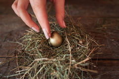 Putting one golden egg into straw nest closeup Stock Photo