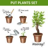 Putting  Plants Icons Set Stock Image