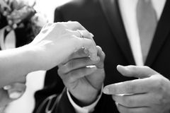 Putting ring on Royalty Free Stock Image