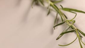 Putting rosemary and basil herbs on table. Close up stock video