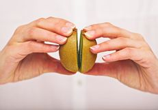 Putting Two Segments of Kiwi Together Stock Image