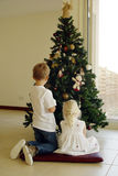 Putting up the xmas tree Stock Photos