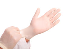 Putting on white protective Glove. Streching white protective gloves, isolated on white stock photo