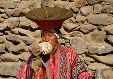 Pututo Player. Indigenous Andenian Man Playing Ancient Musical Shell Instrument royalty free stock photo