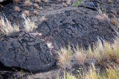 Puu Loa Petroglyphs en la cadena del camino de los cráteres Foto de archivo libre de regalías