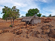 Puukohala Heiau Big Island of Hawaii Royalty Free Stock Image