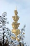 puxian buddha emei mt Royaltyfri Foto