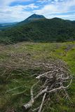 Puy de dome and dead branches. View of the Puy de Dome in summer with dead branches in the foreground Royalty Free Stock Images