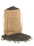 Puy Lentils Royalty Free Stock Image