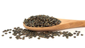 Puy Lentils. In a wooden cooking spoon and scattered over white background Royalty Free Stock Photos