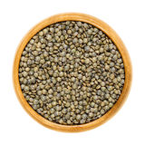 Puy lentils in wooden bowl over white Stock Photography