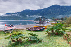 Puyuhuapi海湾,巴塔哥尼亚,辣椒 免版税库存图片