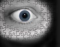 puzzeled的眼睛 免版税图库摄影