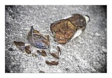 Puzzle of a broken bottle of beer resting on the ground - Free t Royalty Free Stock Photography