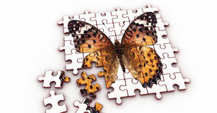 Puzzle (Butterfly) Stock Photos