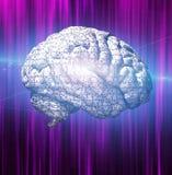 Puzzle del cervello Fotografia Stock