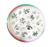 Puzzle del dollaro nella grande bolla immagine stock libera da diritti