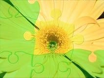 Puzzle del fiore Fotografia Stock Libera da Diritti