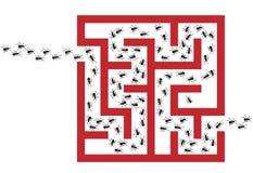 Puzzle del labirinto di problema del parassita di infestazione della formica illustrazione di stock