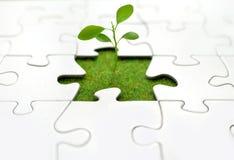 Puzzle della pianta Fotografie Stock