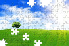 Puzzle della sorgente Immagine Stock