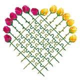 Puzzle di amore del cuore delle rose Fotografie Stock