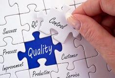 Puzzle di controllo di qualità Immagine Stock Libera da Diritti