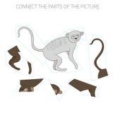 Puzzle game for chldren vervet ape Stock Image