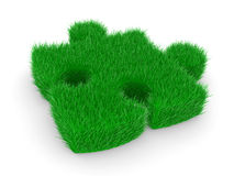 Puzzle with green grass Stock Images