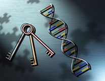 The Puzzle and the Keys. Keys and a strand of DNA upon a surface covered with puzzle piece shadows Vector Illustration