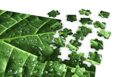 Puzzle of a leaf Royalty Free Stock Images