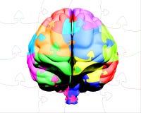 Puzzle multicolore de cerveau Photos libres de droits