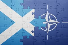 Puzzle with the national flag of scotland and nato Stock Photo