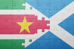 Puzzle with the national flag of suriname and scotland. Concept Royalty Free Stock Photo