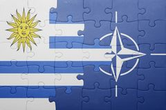 Puzzle with the national flag of uruguay and nato Royalty Free Stock Image