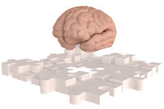The Puzzle piece Brain missing Build Stock Image