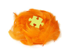 Puzzle piece in orange feathers nest Royalty Free Stock Photo