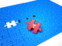 Puzzle pieces with text and red piece Royalty Free Stock Image